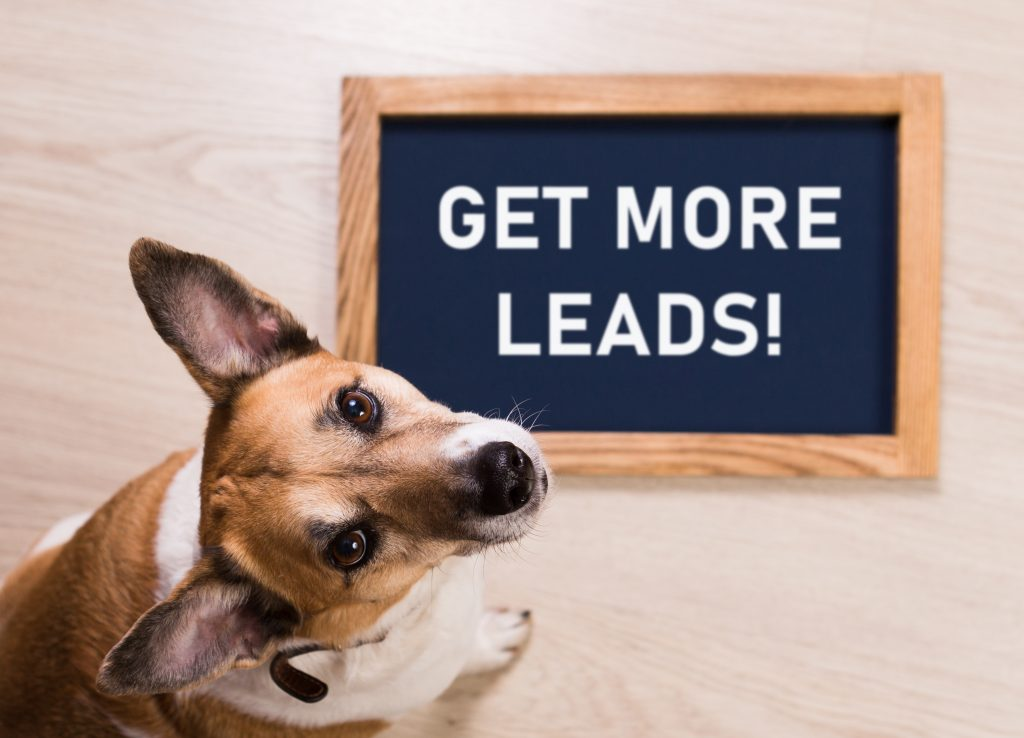 """dog next to chalkboard that says """"get more leads!"""" article on marketing tactics for more clients"""
