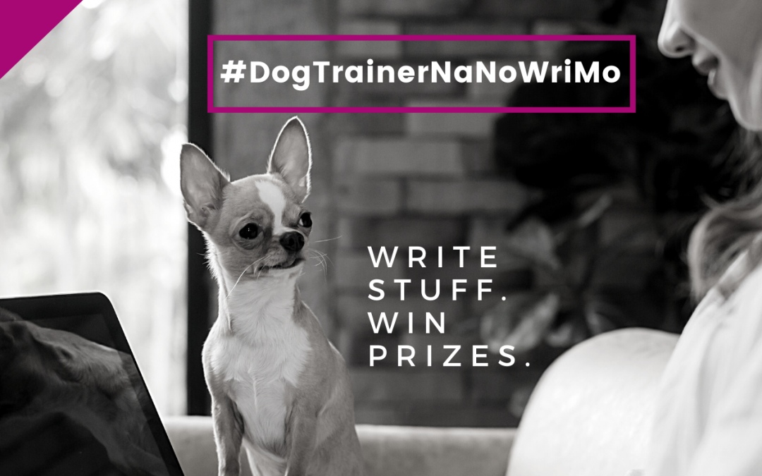 Blog Writing Prep: Your #DogTrainerNaNoWriMo 2020 Checklist