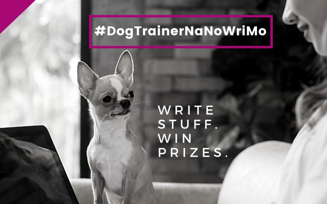 Blog Writing Prep: Your #DogTrainerNaNoWriMo 2020 Checklist