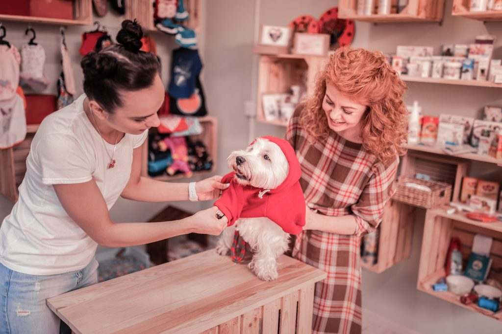 Happy dog clothing customer connects with sales person