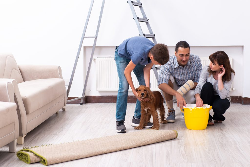 young family doing construction work with dog. article on building your website.