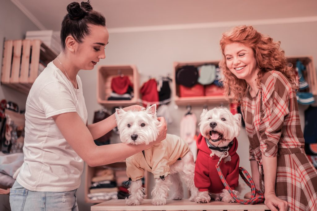 happy customer at a dog groomer with her two dogs; how to get client testimonials blog post