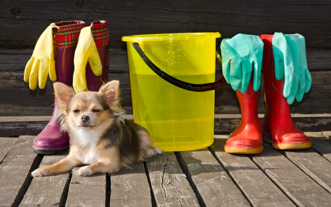 Fix Your Leaky Bucket: Customer Acquisition and Customer Retention