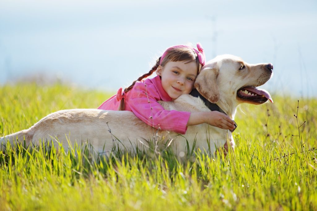 Happy child playing with dog; best marketing tactics for dog trainers