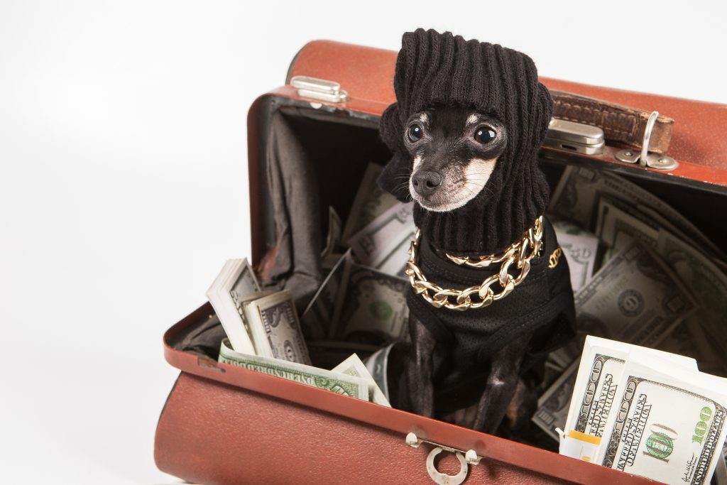 dog dressed like a burglar in a suitcase full of money; article on how to make a swipe file