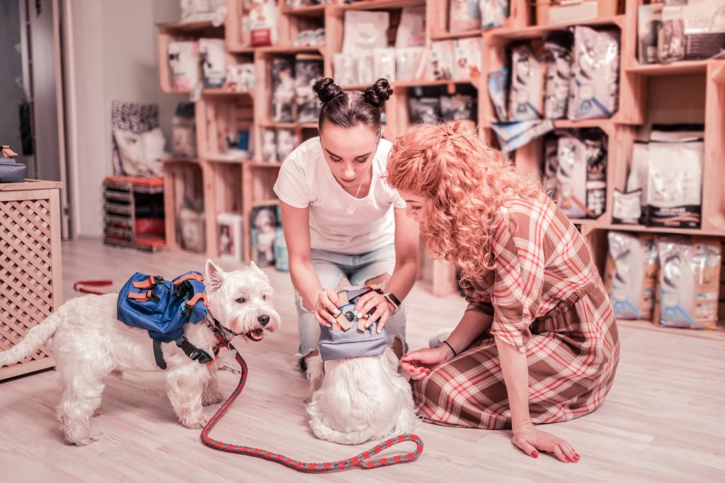 dogs with women in shop; blog post on client onboarding