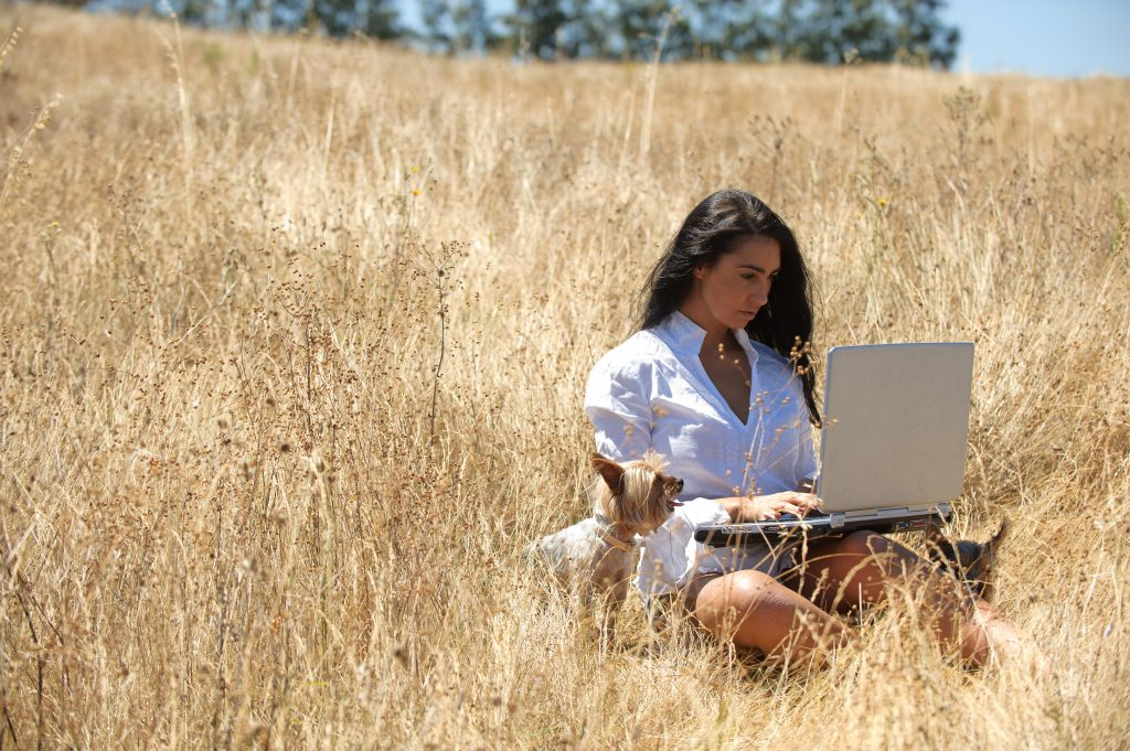woman in a field working on a laptop with her dog next to her; blog post on follow up emails